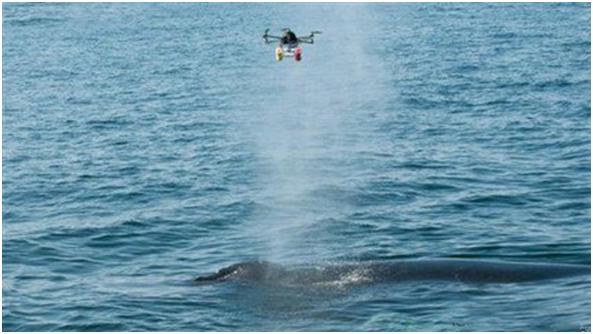 无人机环保监测解决方案